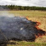 МЧС напоминает: выжигание сухой растительности опасно для жизни!