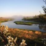 У «Бусліным гняздзе» пчолы раяцца або Чым здзіўляюць турыстаў на Пастаўшчыне