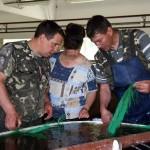 Рыбхоз «Новинки» снова в числе лучших