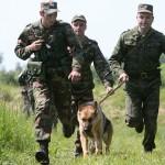 На первом месте — белорусские пограничники