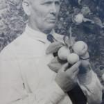 Зямля і космас садавода Івана Сікоры