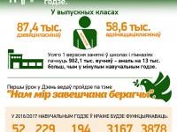 Инфографика беларуская школа